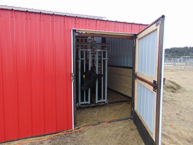 Tecumseh Farm And Ranch Portable Buildings Calving Barn